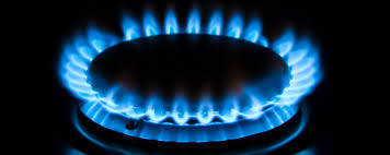 NEDGIA Grupo Gas Natural Fenosa